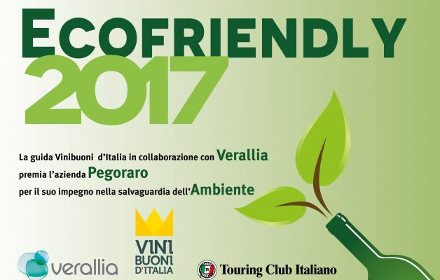 PREMIO ECOFRIENDLY 2017
